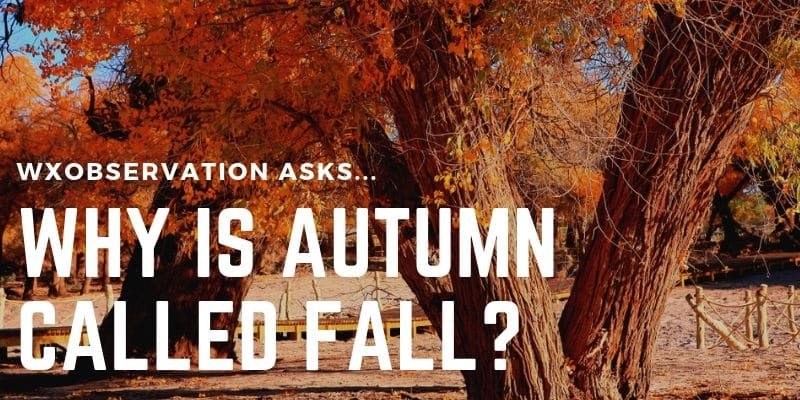 why is autumn called fall